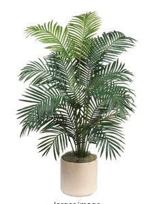 Paradise Palm Tree Pot Included. 68 In.