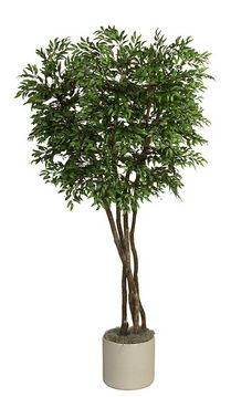 Ruscus Tree Pot Included. 87 In.